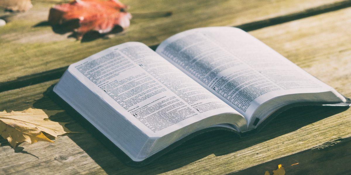 nedelni-zamysleni-bible